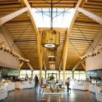 Gloucester Services - interior - view through servery